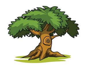 Illustration of three cartoon drawn trees