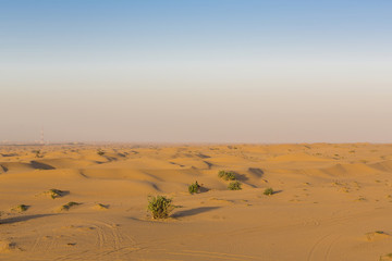 Sand dunes desert near Dubai. United Arab Emirates
