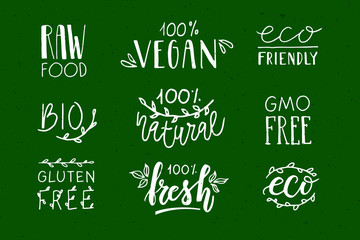 Hand sketched badges and labels with vegetarian, vegan, raw, eco