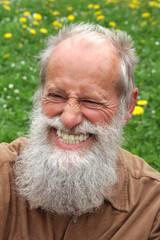 Herzhaft lachender Senior mit Vollbart vor Blumenwiese