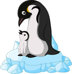 adult Penguin with its chick