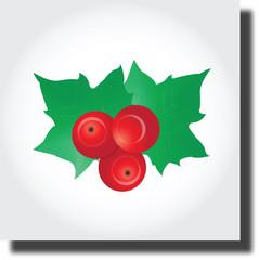 Christmas Flower holly berry