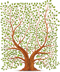 Old vintage tree illustration