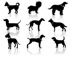 Dog Silhouette Icon Symbol Set EPS 8 vector, grouped for easy editing.