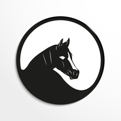 Horse's head. Vector illustration. Black and white view.