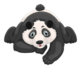 Cute panda crawling on the ground