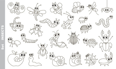 Insect set in vector.