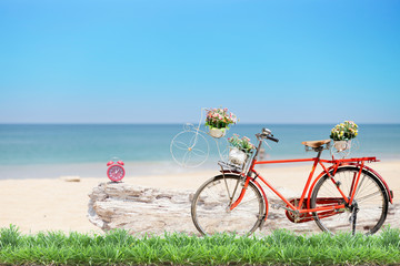 Old red bicycle with basket and flowers with green grass and ala