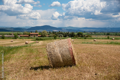 Panorama Di Campagna In Estate Stock Photo And Royalty Free Images