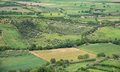 panorama della campagna in primavera
