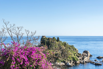 Beautiful red flowers on the  Isola Bella beach. Taormina, Sicily in winter