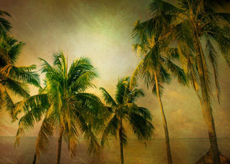 Warm tone palm trees with vintage texture