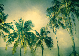 Cool tone palm trees with vintage texture