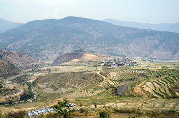 Aerial view of villages in Punakha, Bhutan - Bhutan, village and rice cultivation in Punakha during Spring dry season