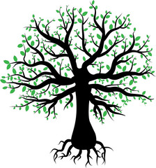silhouette of a tree with green leaves