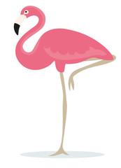 Rosa Flamingo auf einem Bein freigestellt