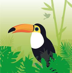 Tukan Papagei Dschungel Vektor
