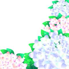 アジサイ、あじさい、紫陽花、花、6月、背景、イラスト、春、初夏、梅雨、