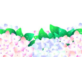 紫陽花、あじさい、アジサイ、下、背景、横長、花、6月、梅雨