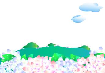 紫陽花、あじさい、アジサイ、春、行楽、丘、郊外、花、花畑、
