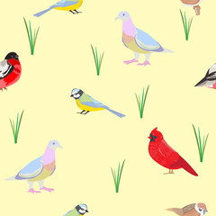 Seamless vector pattern with various drawn birds for design of f