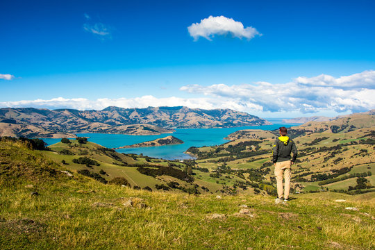 Men watching the Bay of Akaroa, New Zealand