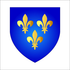 French lily. Coat of arms of French kings, vector illustration. Isolated on white