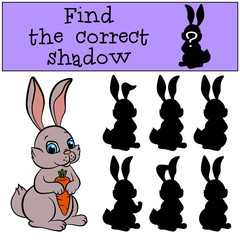 Children games: Find the correct shadow. Little cute hare sits and holds a carrot in the hands.