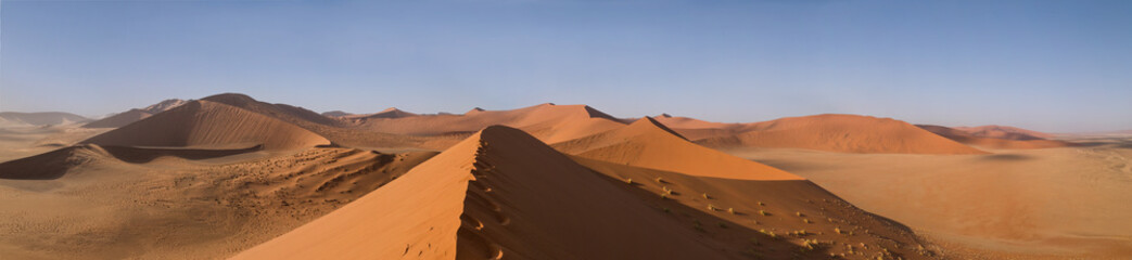 In de dag Oranje eclat Sand Dune 45 in Sossusvlei, Namibia