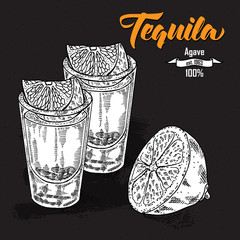 Shot of tequila drink. Hand drawn two glasses of tequila.
