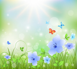 Colorful  abstract summer background with  flowers and butterflies. Vector illustration