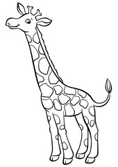 Little cute giraffe stands and smiles.