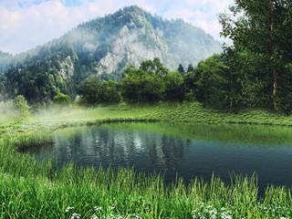 Wall Mural - Górski krajobraz z jeziorem i zieloną łąką z wiosennymi kwiatami