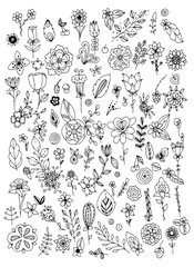 Set of black and white doodle flowers leaves. Hand drawn vector design elements. Black white. Vector vintage illustration. Zentangle. Coloring book page for adult.