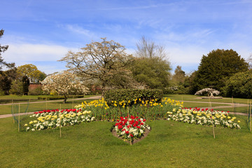 Landscaped park with flower beds and blossoming trees in springtime.