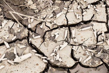 cracked earth drought  dry riverbed disaster