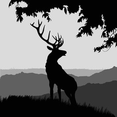 monotonic illustration of an elk