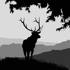 monotonic illustration of an elk