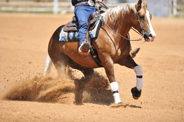 A side view of a rider and horse running ahead in the dust.