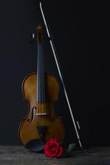 Low key violin and rose flower soft lighting