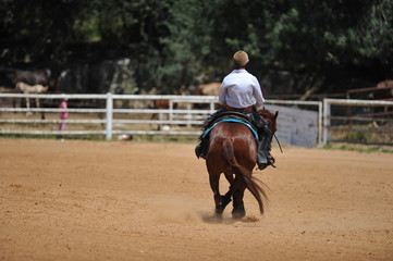 A rear view of a rider and horse sliding in the dust.
