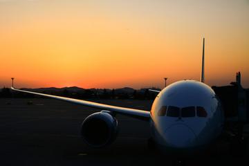 夕日に映える飛行機の機体