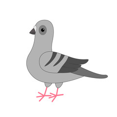 Dove bird. Gray Pigeon Cute cartoon character on white background. Isolated. Pigeon icon Flat design