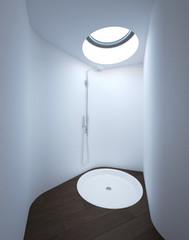 Modern Shower with Skylight in Luxury Bathroom