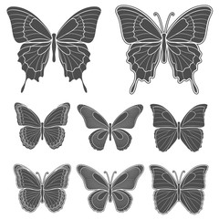Set of vector butterflies. Isolated objects on white.