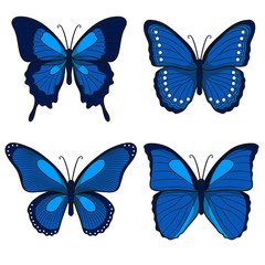 Set of blue vector butterflies. Isolated objects on a white background