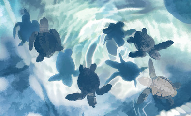 Small turtles in pool illutration