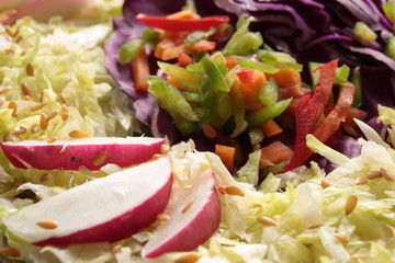Mixed salad cut into julienne strips