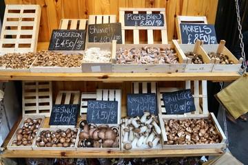 Mushrooms at market - London Borough Market