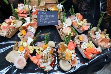 Mixed mushrooms at London Borough Market